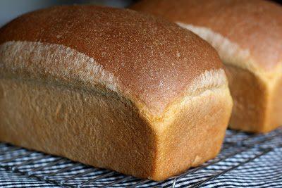 easy wheat bread recipe
