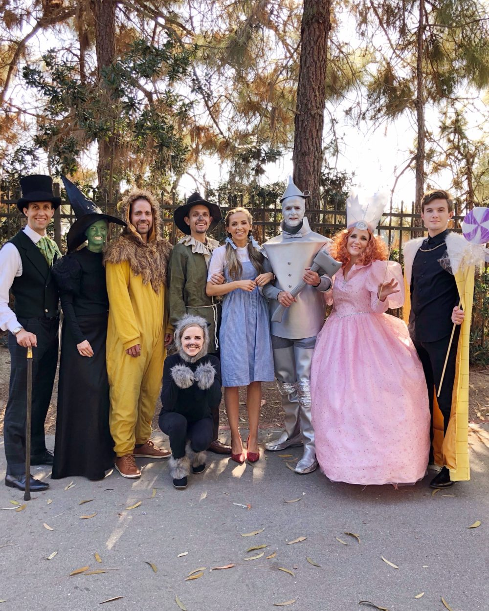 20 Fun Family Halloween Costumes Everyday Reading